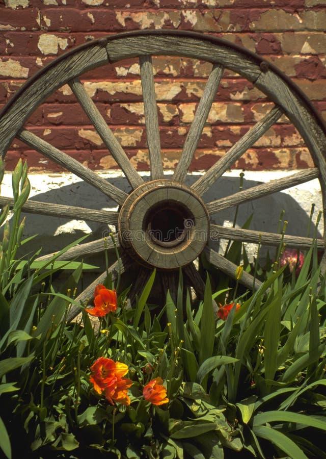 Old Cart Wheel royalty free stock photo