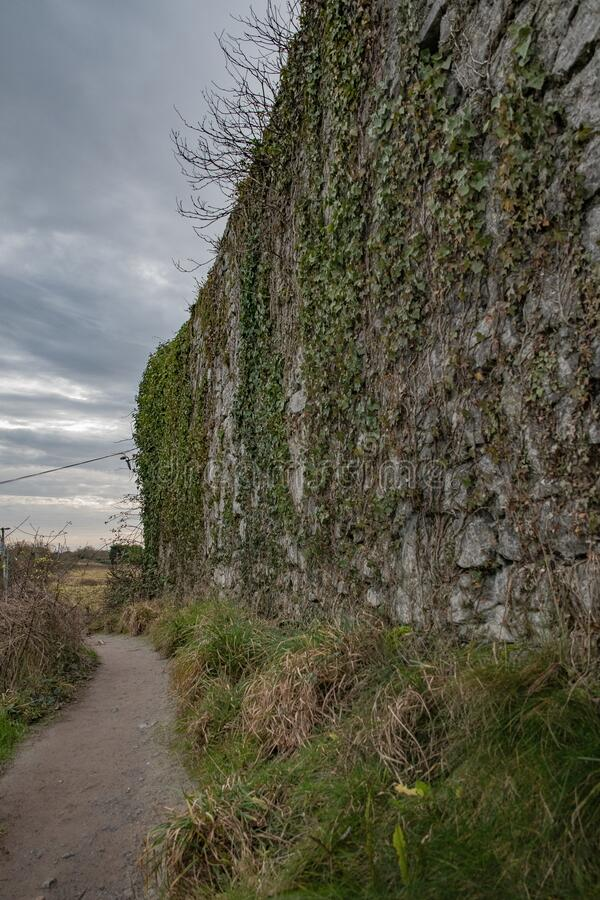 The old Castle wall royalty free stock photo