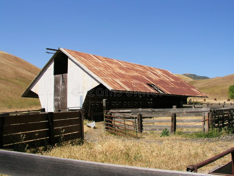 Old Cattle Barn stock image. Image of roof, fence, rusted ...
