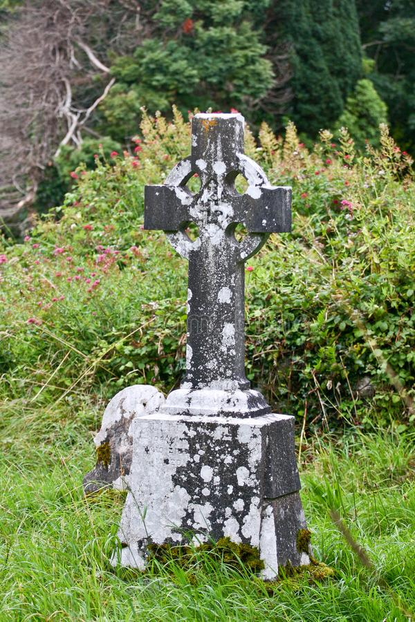 Old Celtic cross at the cemetery of the Muckross Abbey ruins, Ireland stock photo