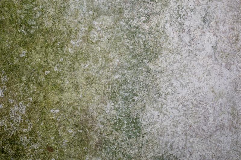 Old cement wall with green mold and dirt, texture of aged concrete surface. Background royalty free stock photo