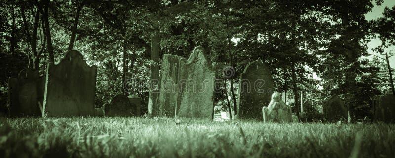 Old Cemeteries - Ground View Panorama stock image