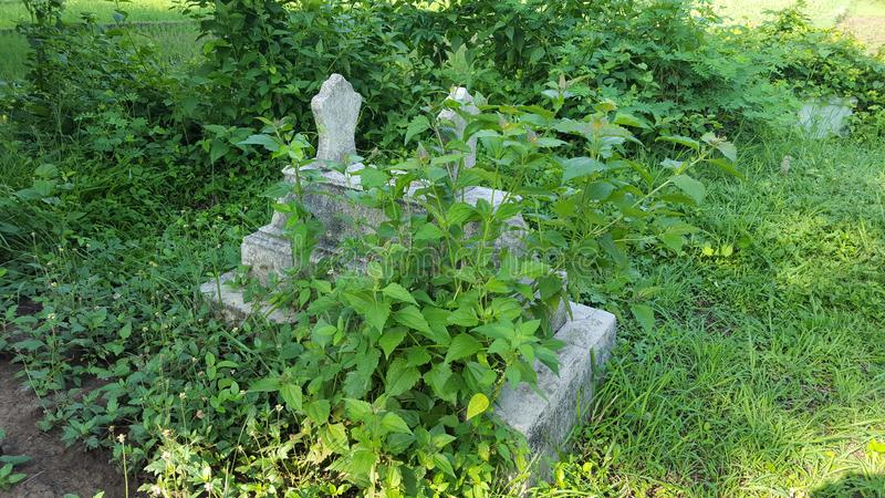 Old cemetery ancestors stock photography