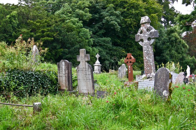 Old cemetery of the Muckross Abbey ruins, Ireland stock photography