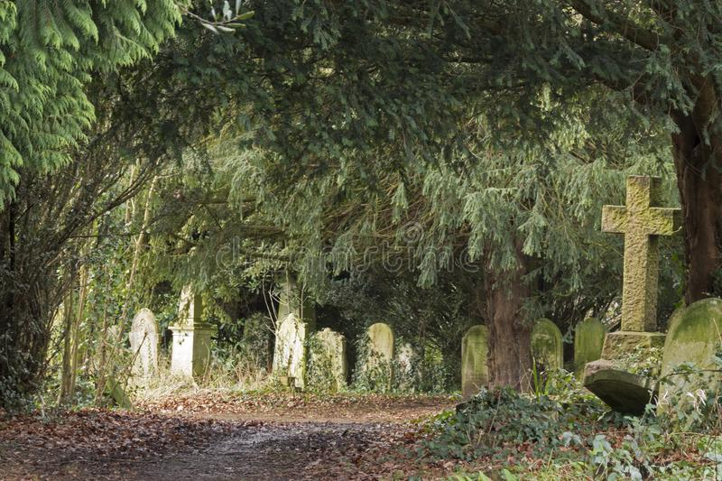 Download The Old Cemetery, Southampton Common Stock Photo - Image of common, cemetery: 109033956