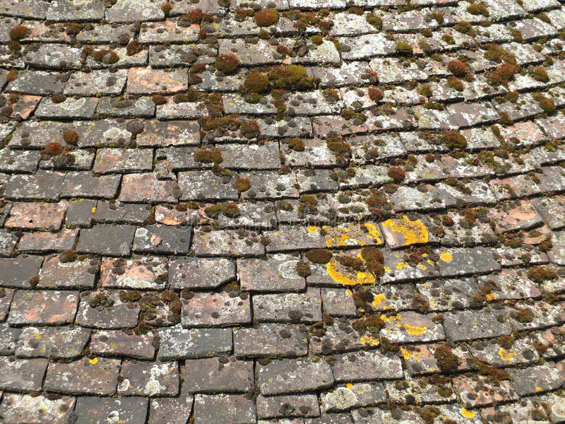 Old chipped roof tiles with moss in an overlapping curve royalty free stock photos