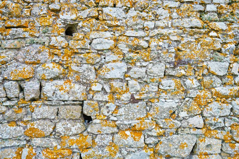 Texture of old citadel wall with dark yellow/brown lichens and a couple of holes used for defense in the middle ages. royalty free stock photography