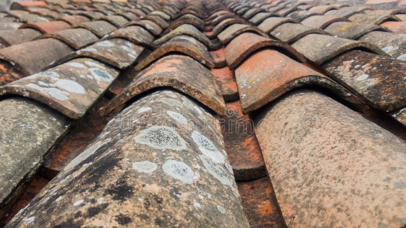 Old clay tiles with mildew stains.  royalty free stock photo