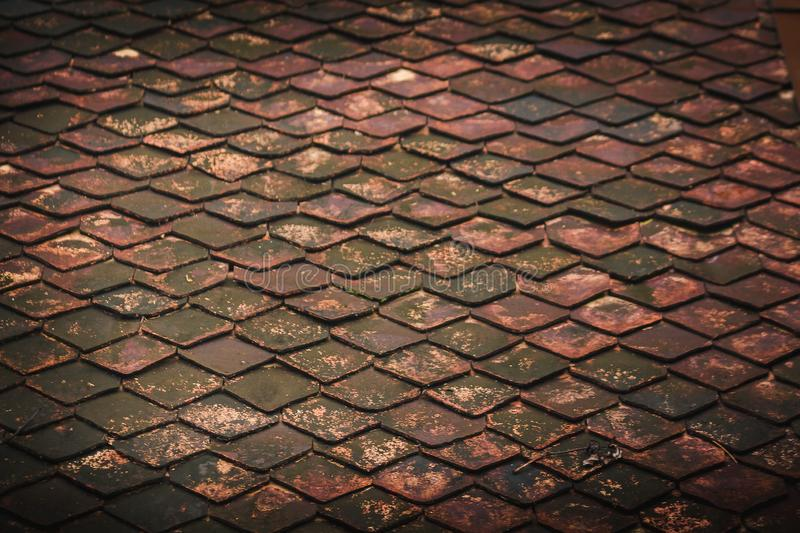 Old clay tiles on the roof with moss. Caused by moisture royalty free stock images