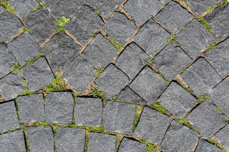 The old cobbled pavement overgrown with grass royalty free stock photo