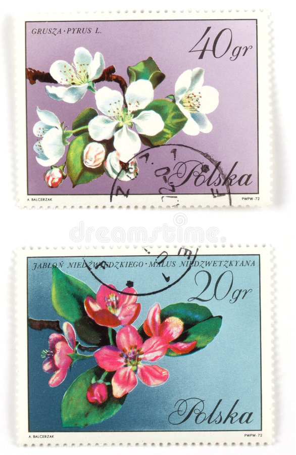 Old collectible stamps from Po. Collectible stamps from Poland. Set with spring tree blossom stock images