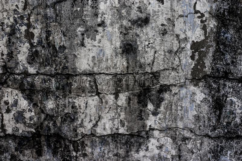 Old concrete wall stock photo