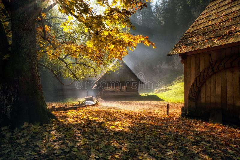 Old cottages under colorful trees royalty free stock images