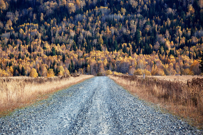 Download Old Country Road In Autumn Mountain Forest Stock Image - Image: 20975215