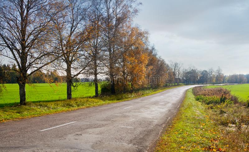 Country road in early autumn. stock photography