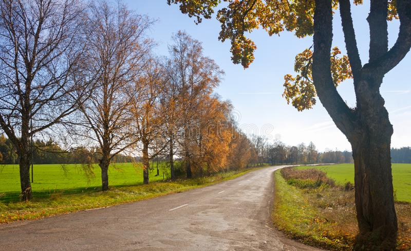 Country road in early autumn. stock photo