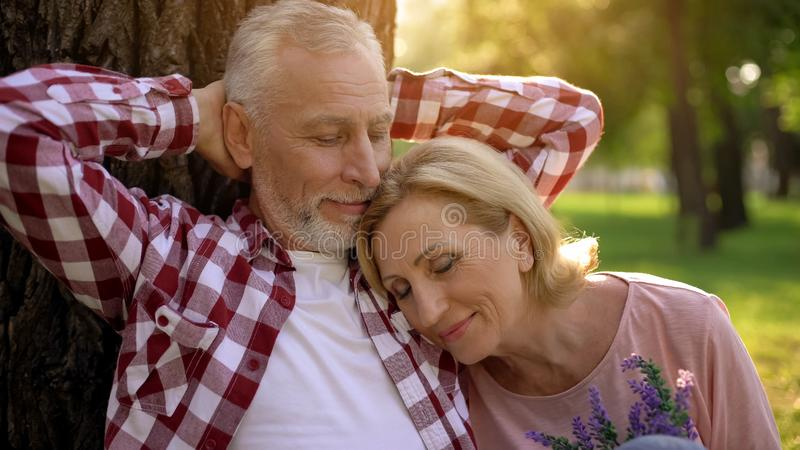 Old couple sitting in park near tree, woman lying on mans shoulder, dating stock image