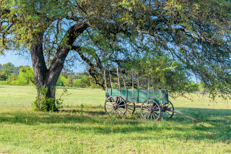 Old Covered Wagon Under the Oak Tree stock images