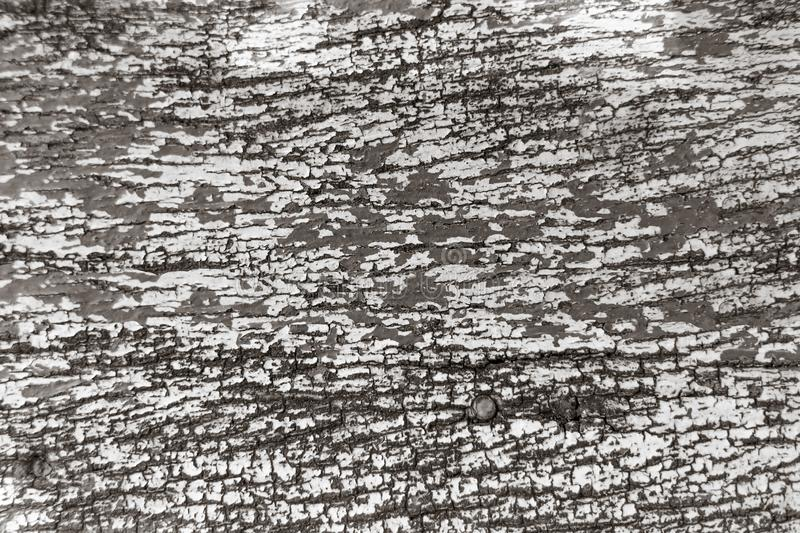 Old crack paint wood texture. Pattern for background royalty free stock image