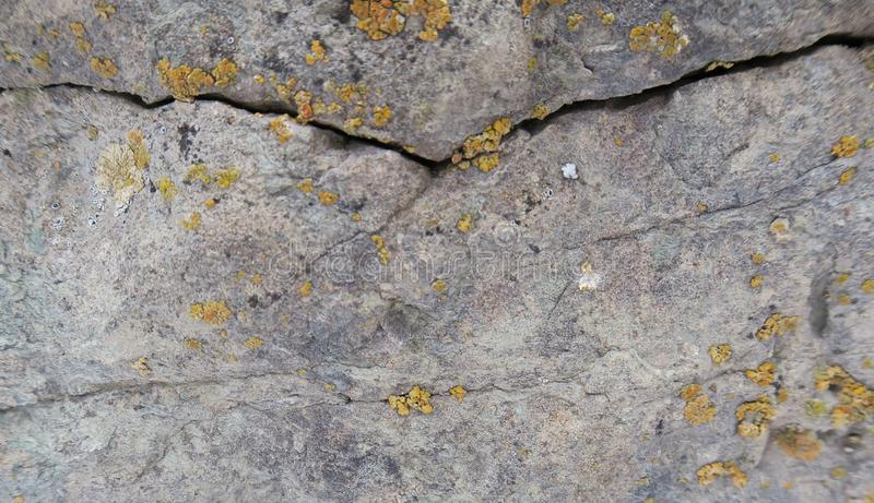 Old crack in stone. Close-up shot of old crack in grey stone with pieces of withered lichen. Horizontal background concept royalty free stock photo