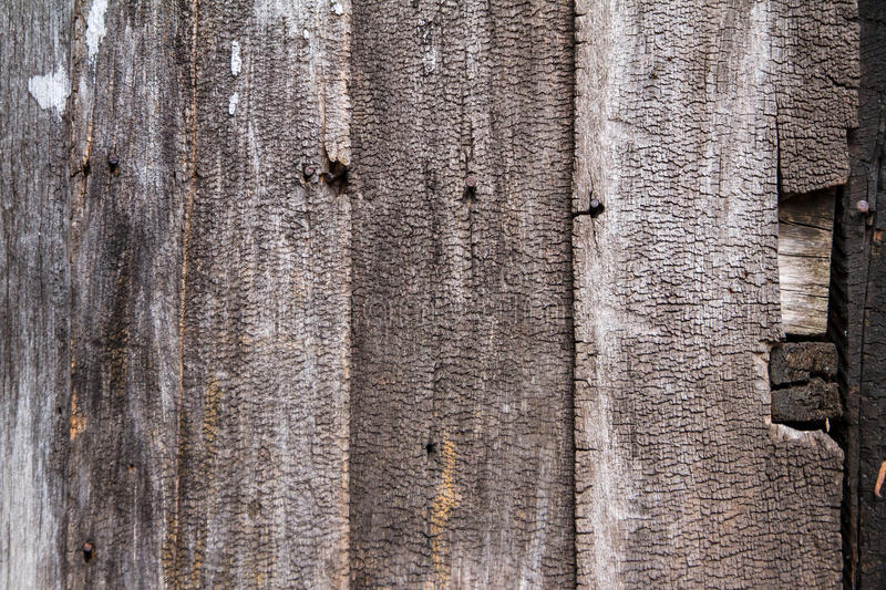 Old crack wood texture for background. Old crack wood texture for background stock photography