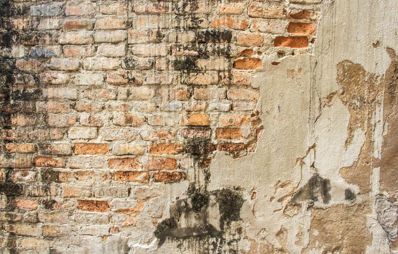 Orange Cement Wall : Old cracked concrete vintage brick wall background stock