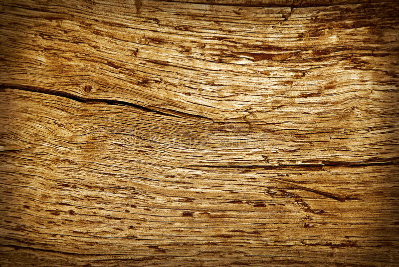 Download Old cracked wood stock photo. Image of pine, shabby, floor - 16653196