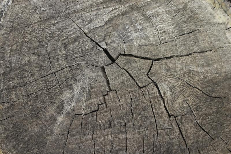 Old cracked wood royalty free stock photography