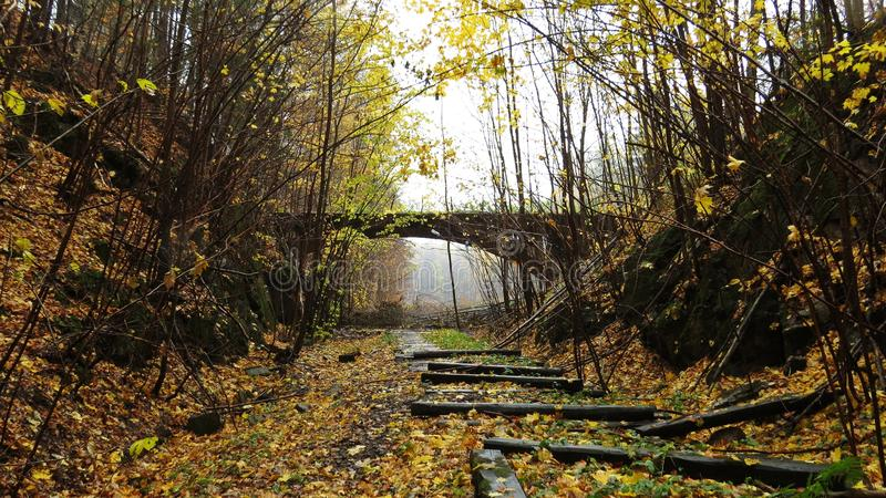 Old Deserted Ruin of Railway Bridge in Autumn Forest with Falling Yellow Leaves on Railroad stock photos