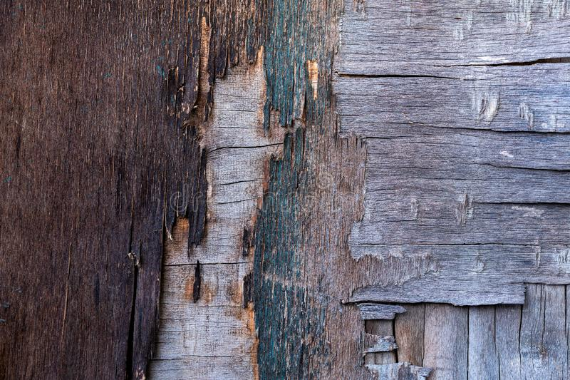 Old destroyed plywood sheet closeup surface texture.  royalty free stock images
