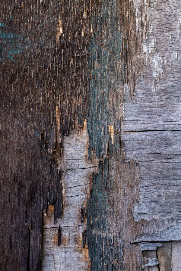 Old destroyed plywood sheet closeup surface texture.  stock images