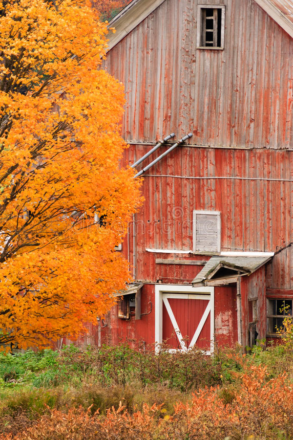 Free Old Dilapidated Country Barn During Autumn. Stock Photography - 38498742
