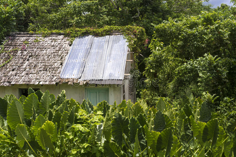 Old dilapidated hut or shed with damaged roof stock photography