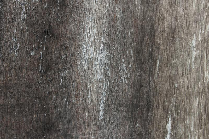 Old dirty wall made of gray wood stock image