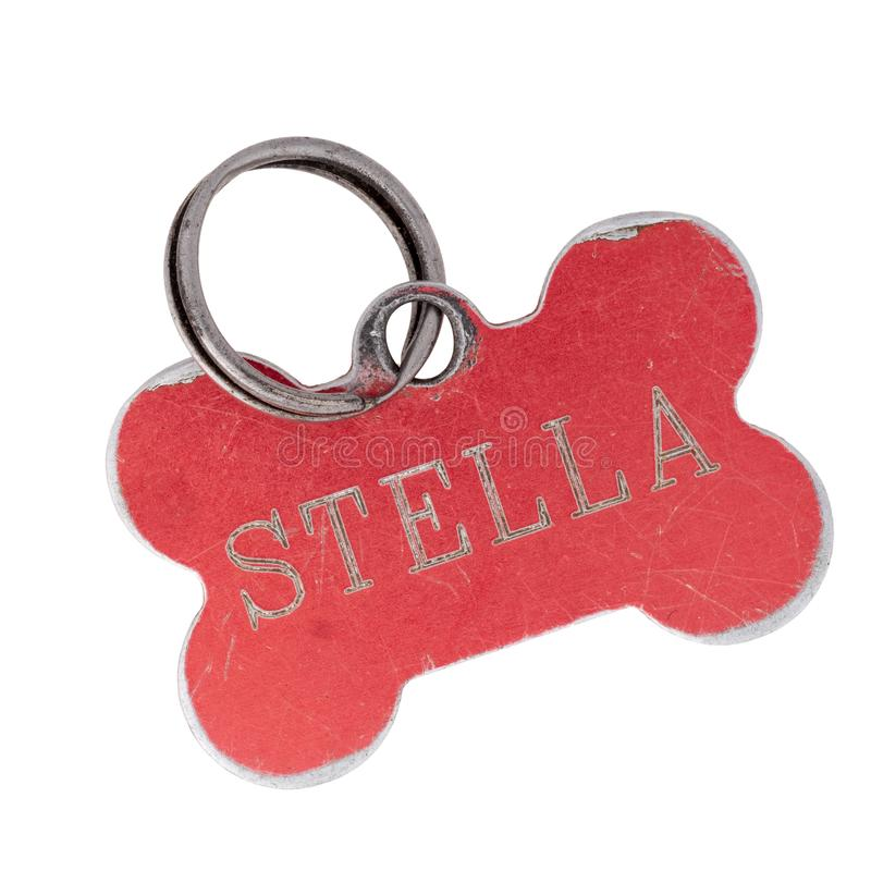 Old dog name tag in shape of bone, red, with name Stella. Memento to remember deceased pet, isolated on white. Background royalty free stock image