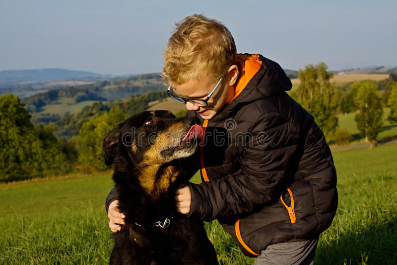 Old dog with young boy stock images