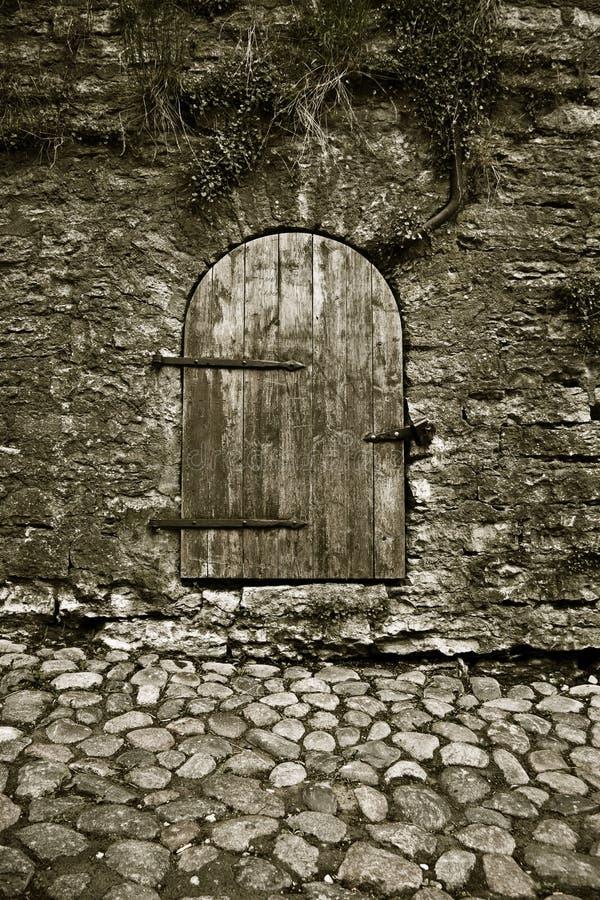 Free Old Door Royalty Free Stock Photos - 5219198