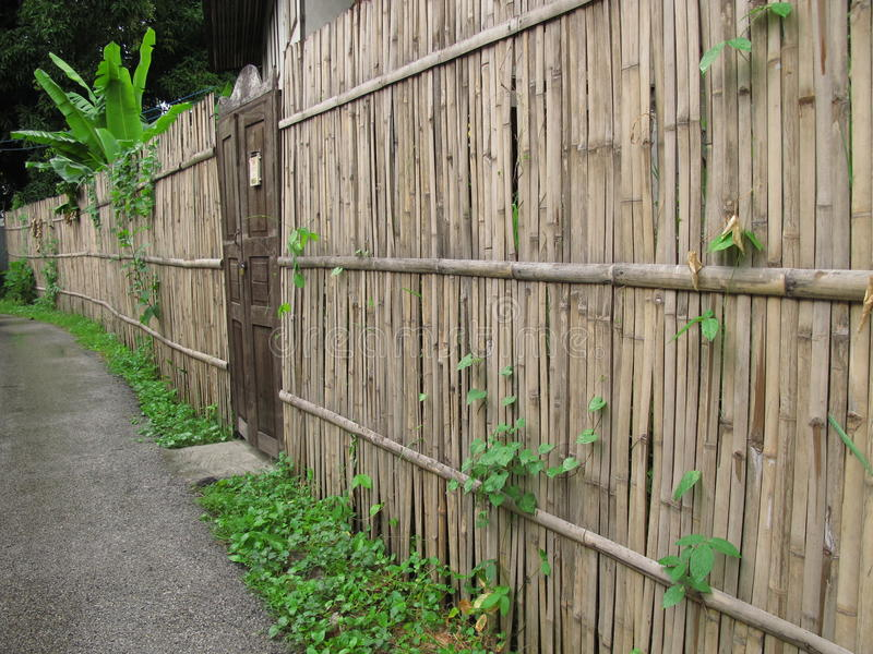 Download Old door and bamboo fence stock photo. Image of bamboo - 21379170