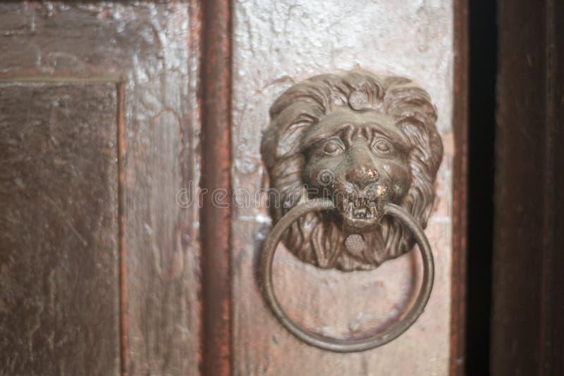 Old Door knoker handle in the form of a lion`s head on an wooden door stock images