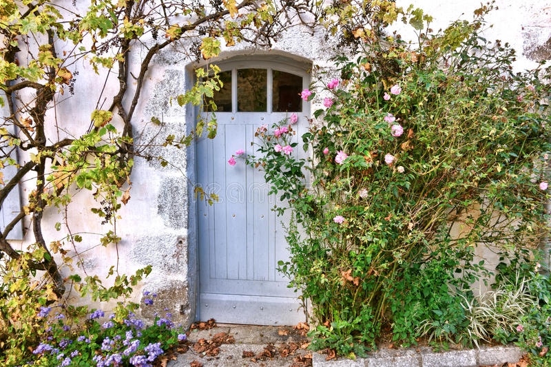 Old Door With Overgrown Rose Bush Stock Photography