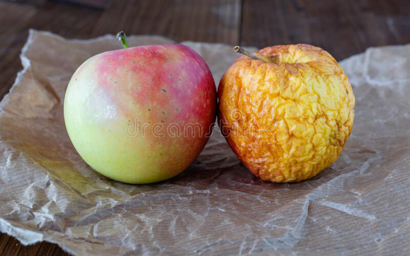 Old, dried apple. Food waste. Rotten fruit. Apple on boards. Old, dried apple. Food waste. Rotten fruit. Past due purchases. Food leftovers. Apple on boards stock image