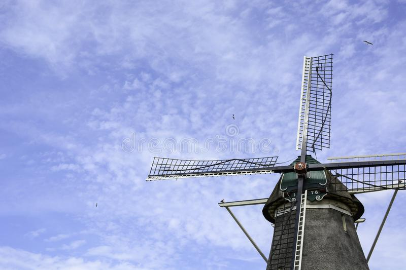 Old Dutch windmill from the year 1776 with blue cloudy sky and flying birds, Zwolle, The Netherlands.  royalty free stock photos