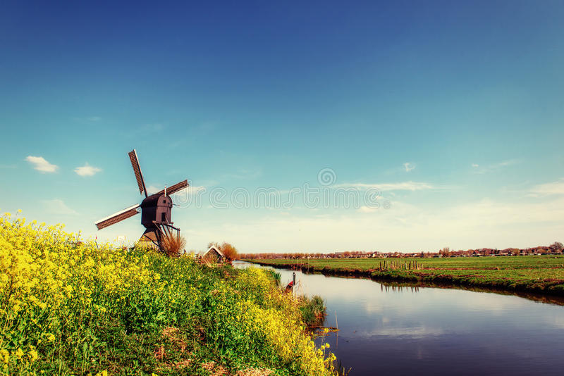 Old Dutch windmills spring from the canal in Rotterdam. Holland.  stock images