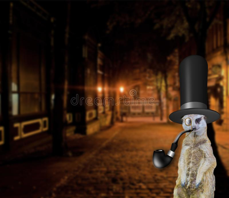 Old english funny concept of a posh meerkat wearing a vintage top hat and standing in the city streets royalty free illustration