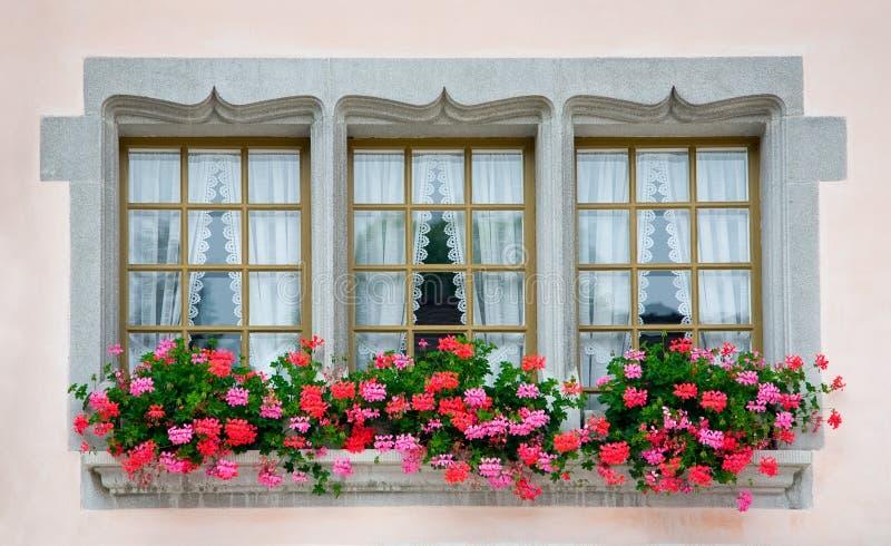 Old European Windows. With flowers stock photos