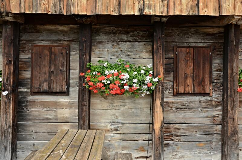 Old European wooden window with shutters and flower royalty free stock images