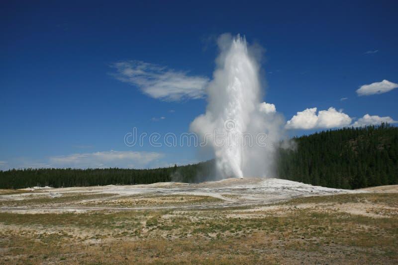 Old faithful geyser stock images