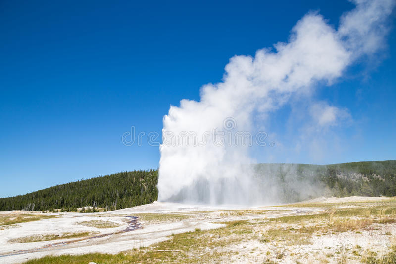Old Faithful geyser eruption into Yellowstone National Park, USA stock image