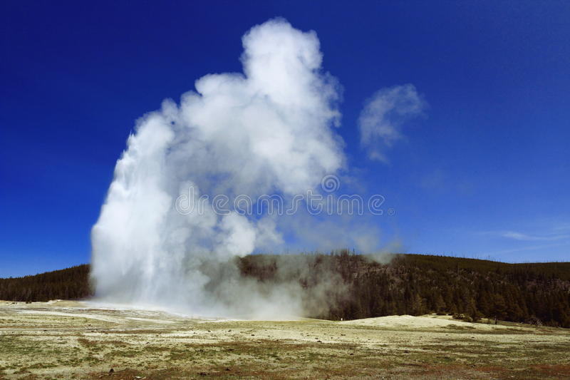Old Faithful Geyser, Yellowstone National Park, Wyoming. Impressive eruption of Old Faithful Geyser at the Upper Geyser Basin in Wyoming`s Yellowstone National royalty free stock photo