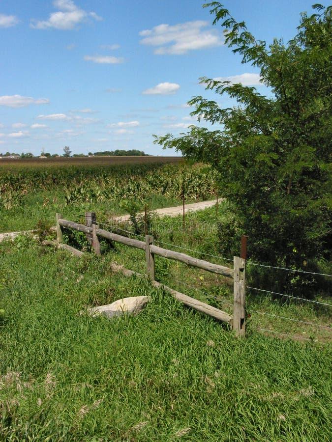 Download Old Farm - 1282 stock image. Image of tree, illinois, wood - 20429